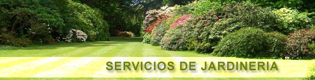 Servicio de mantenimiento de jardines