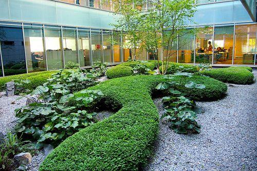 servicio de jardines oficinas